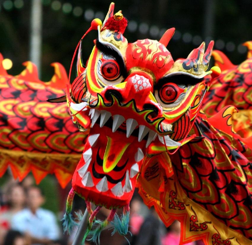 China Dragon: Chinese New Year Display At Clonmel Library