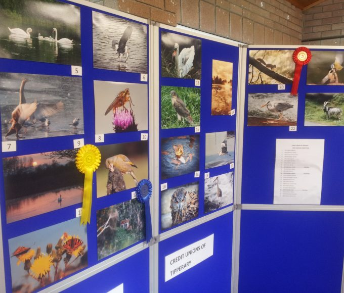 Tipperary Credit Union Photography Competition Exhibition In Roscrea Library
