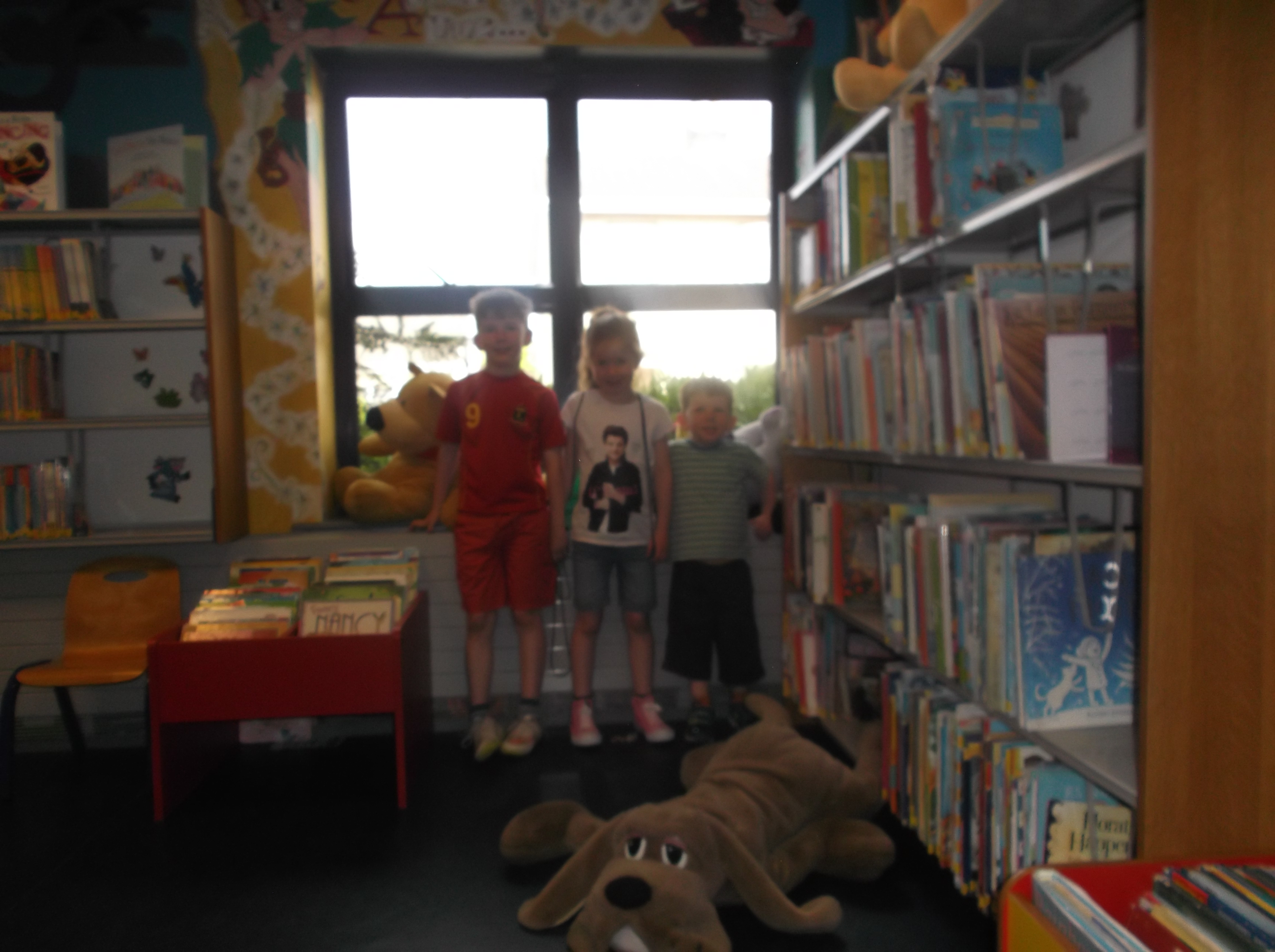 Donegal visitors to Cashel library
