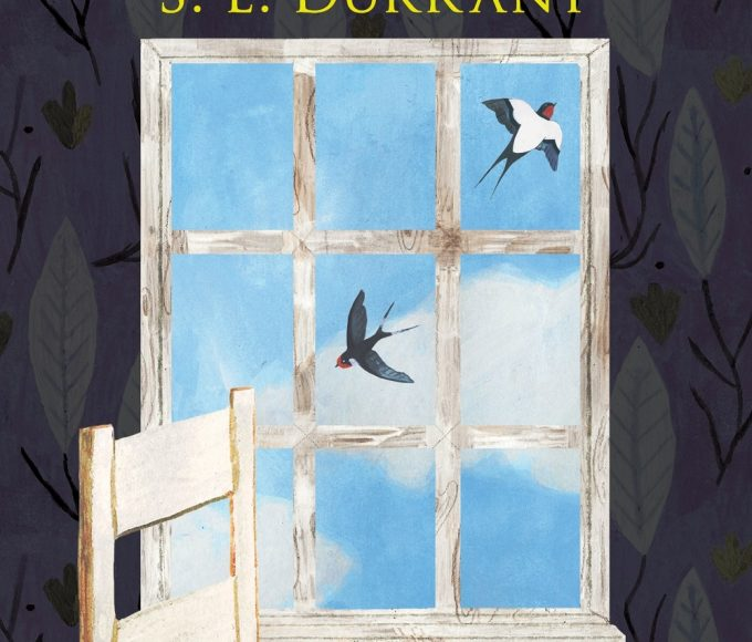 Clonmel Library Book Review: Little Bits Of Sky By S.E. Durrant