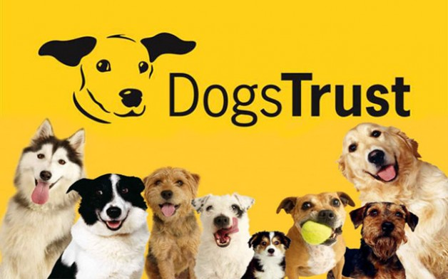 Tipperary Town Library ; Free Dog Safety Workshop