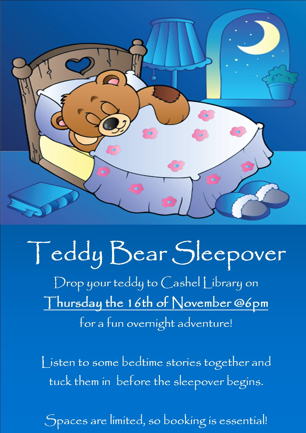 Teddy Bear Sleepover In Cashel Library