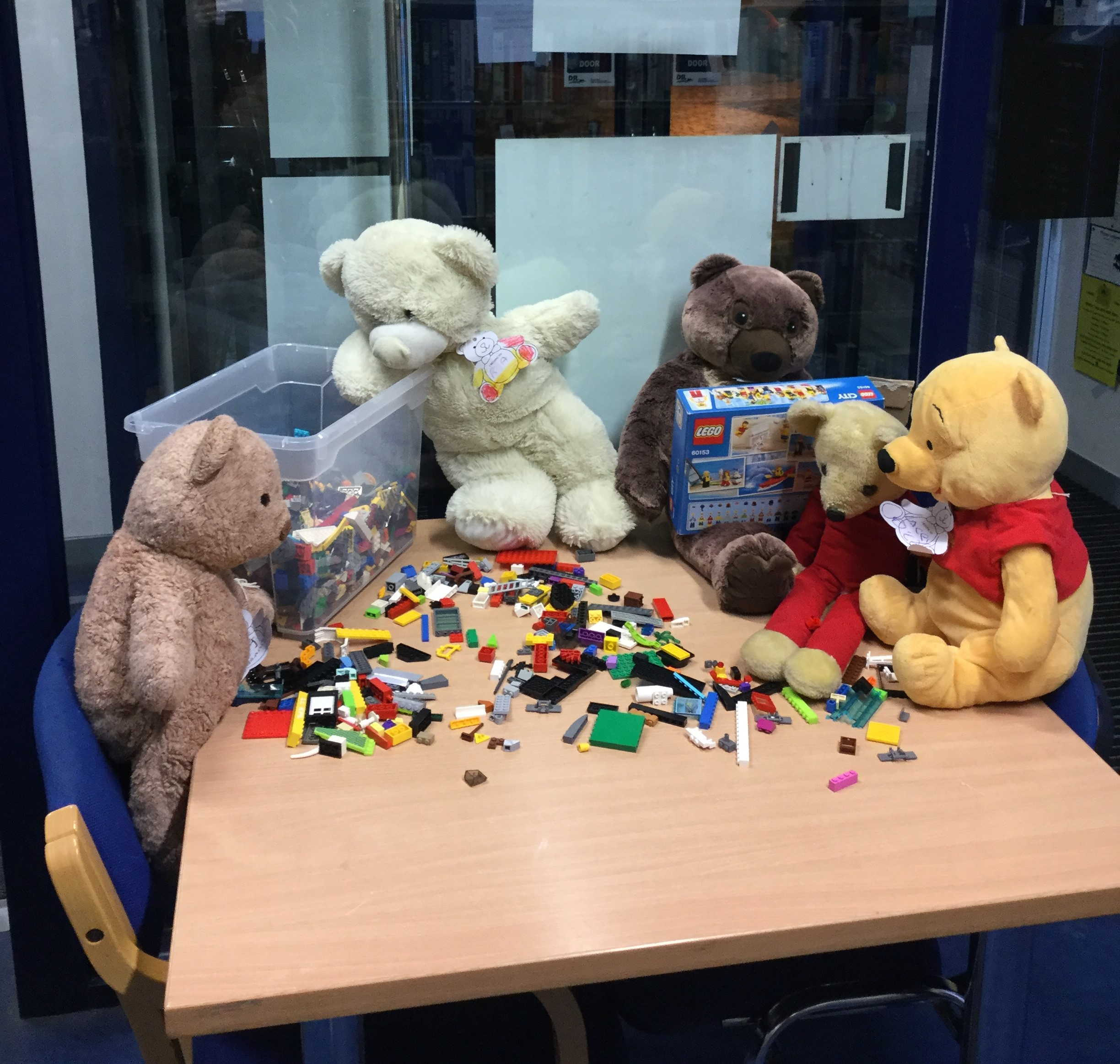 Cashel Library's Teddy Bear Sleepover