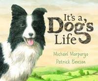 IT'S A DOG'S LIFE (Copy)