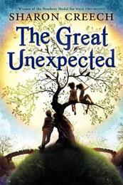 THE GREAT UNEXPECTED (Copy)