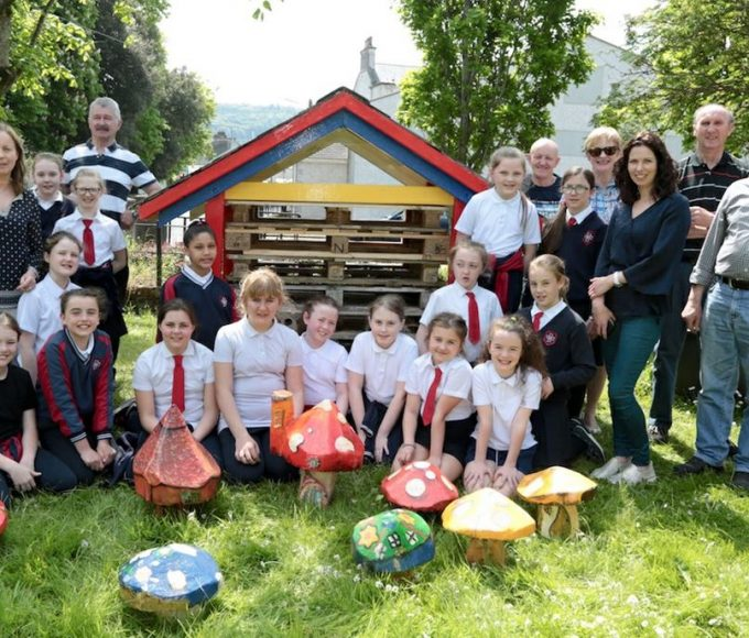 Bug Hotel Open For Business In Carrick