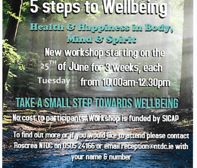 5 Steps To Wellbeing Workshop In Roscrea Library