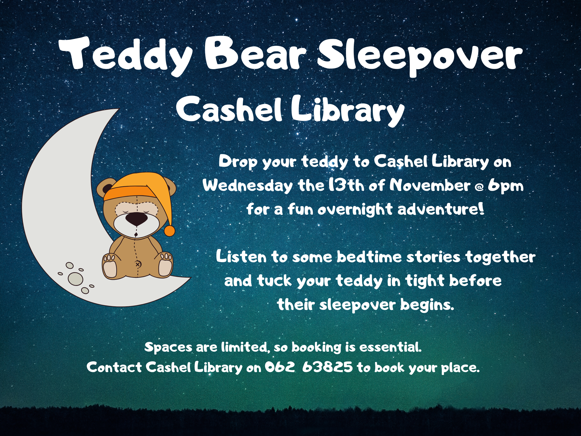 Teddy Bear Sleepover In Cashel Library