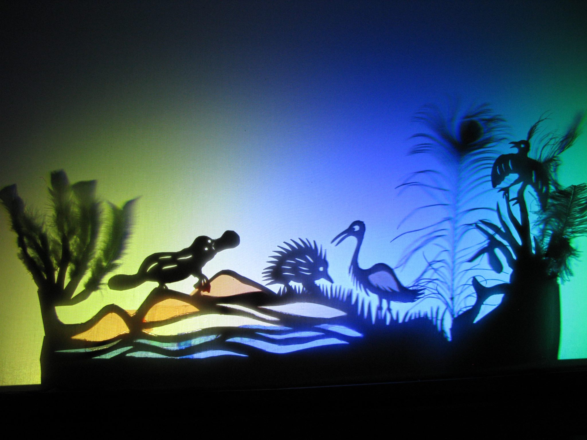 Julie Rose McCormack Shadow Puppets